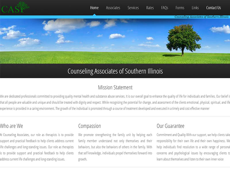 CASI Web Site Image